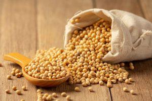 A importância do tratamento de semente - Cimisa